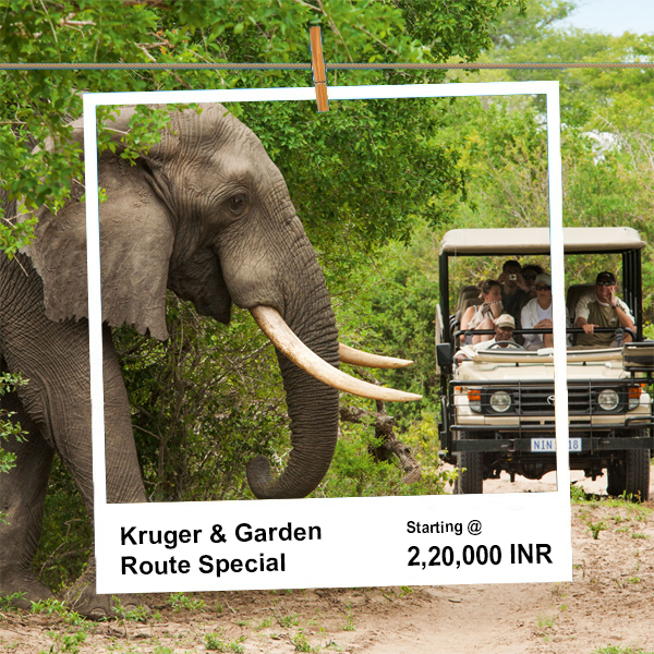 Kruger National Park Safari: Fascinating Haven for Wildlife and Nature Lovers
